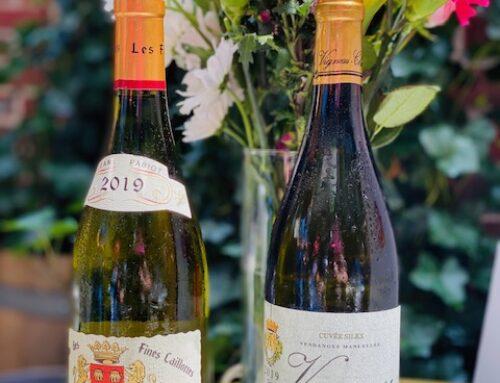 Loire Valley Wines Bike & Sip!